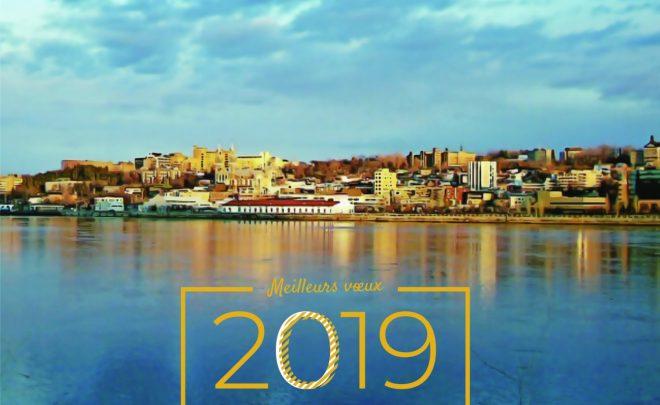 Nos meilleurs vœux 2019 !