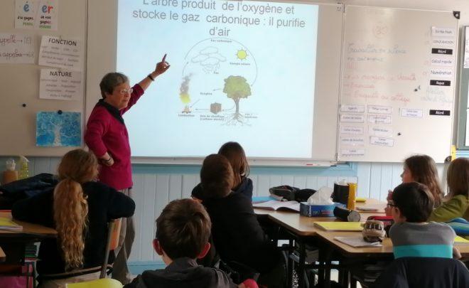 Ateliers scolaires sur la vie à Ségou